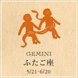 GEMINI/ふたご座
