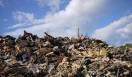 松浦俊夫 from TOKYO MOON 7月3日 ON AIR 3ヵ月を経て、あちこちに積み上げられる車両や大量の瓦礫。