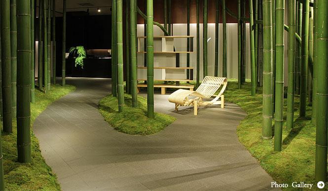 Cassina ixc.|「シャルロット・ペリアン」の美しく斬新な世界