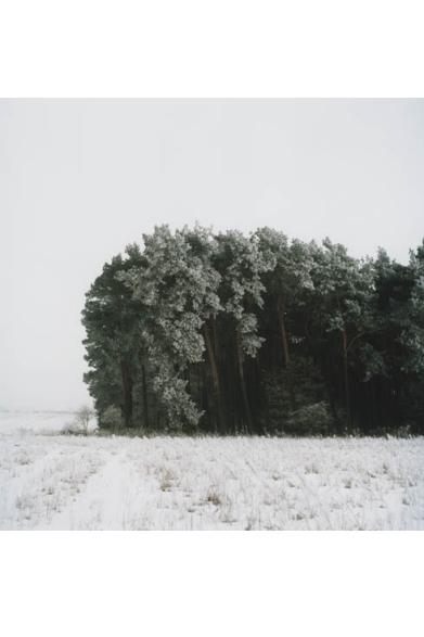 Noch ein Winterwald 2006  © Anne Schwalbe  日程│3月23日(土)~4月7日(日) ※月曜定休 時間│12:00~20:00 会場│POST(limArt内) 東京都渋谷区恵比寿南2-10-3 Tel.03-3713-8670
