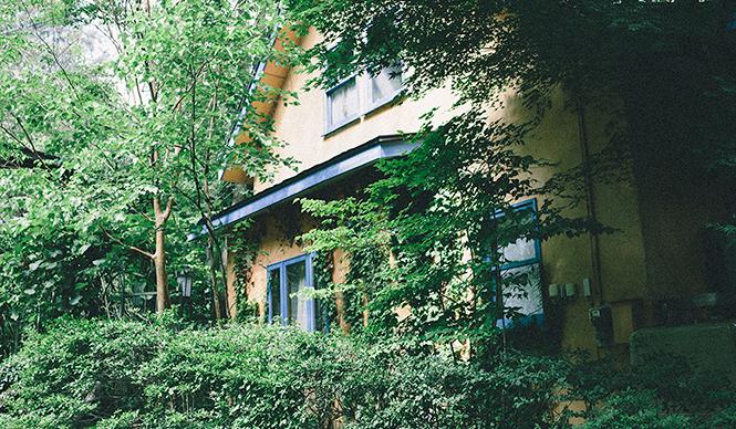 木村東吉さんの自宅。大きなシャラに囲まれ、サンショウや各種のハーブが茂り、アイビーが伝う美しい家だ。