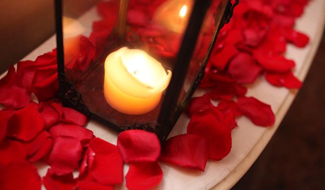 rose_02_665
