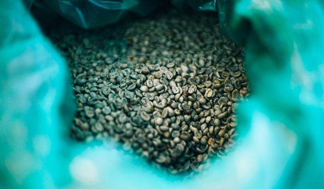 4. SWITCH COFFEE TOKYO(目黒)  <焙煎士> 大西正紘|ONISHI Masahiro 2010年、オーストラリアへ渡り、メルボルンの「The Premises」に勤務。2011年、福岡の「ハニー珈琲」に勤務。2013年、オーナー兼焙煎士として「SWITCH COFFEE TOKYO」をオープン。2009年、「第二回ブレンズコーヒーラテアート大会」優勝、翌年はニューヨークの「Coffeefest 全米ラテアート大会」に出場し第2位、さらにその翌年には、オーストラリア・ビクトリア州でおこなわれた「Pura Milk AASCA Latte Art Championship」で第2位入賞を果たした。 <焙煎機のある店> SWITCH COFFEE TOKYO 営業時間|10:00~19:00 定休日|不定 住所|東京都目黒区目黒1-17-23 Tel. 03-6420-3633 http://www.switchcoffeetokyo.com/  <編集メモ> ・常時おいている珈琲豆 6種類 ・珈琲豆の価格帯 1950円~2500円/250グラム ・店内での試飲 可(無料)
