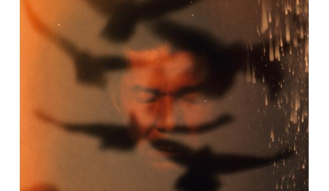 DIESEL ART GALLERY|深瀬昌久 写真展『救いようのないエゴイスト』を開催