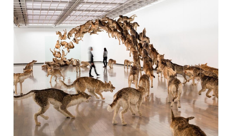 YOKOHAMA MUSEUM OF ART 中国出身の現代アーティスト 蔡國強による『帰去来』展
