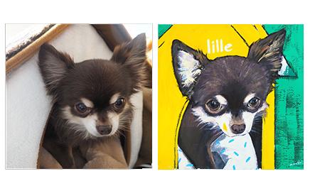 ART|愛するペットの肖像をポップなアートにしてみませんか?